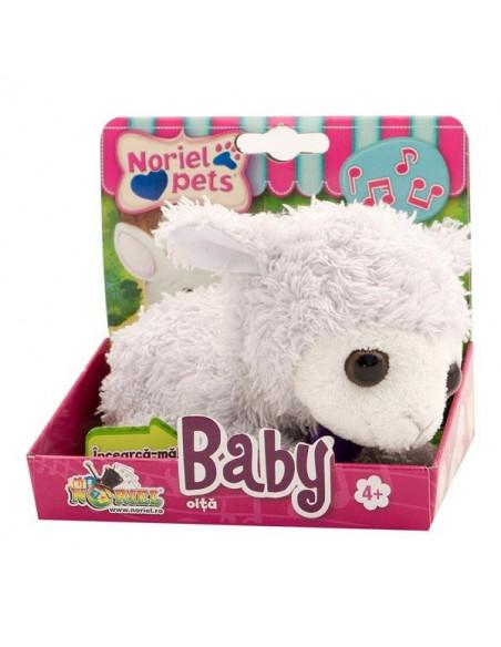 Noriel Pets Baby Oita