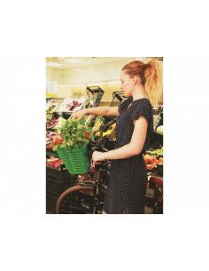 Bellelli Plaza cos pentru bicileta plastic - verde