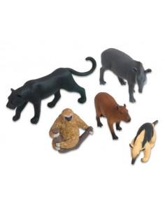 Animale din America de Sud