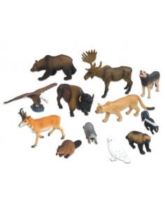 Animale din America de Nord