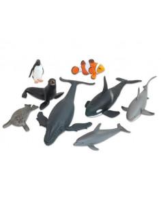 Animale din ocean