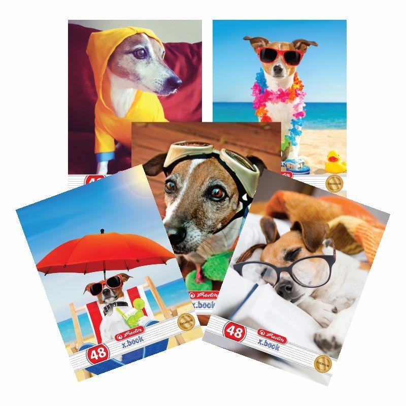 Set 10 caiete Herlitz Cool Dog A5, 48 File, 5 Dictando + 5