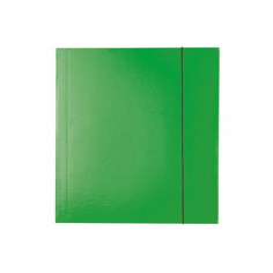 Mapa Carton Esselte Cu Elastic Economy, verde