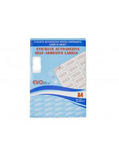 Etichete autoadezive 30/A4, 70x29.7 mm, 100 coli/top