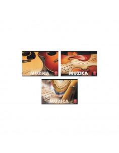 Caiet Pigna muzica, 24 file