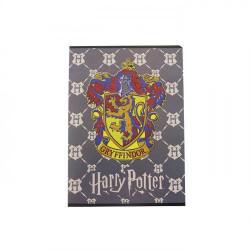 Caiet Pigna A5, Harry Potter, 48 file, Dictando