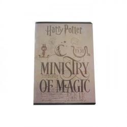 Caiet Pigna A5, Harry Potter, 48 file, Matematica