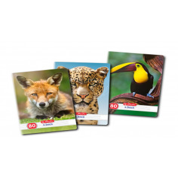 Set 5 Caiete A4, Herlitz Animals, Dictando, 80 File