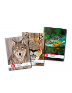 Set 5 Caiete A4, Herlitz Animals, Matematica, 80 File