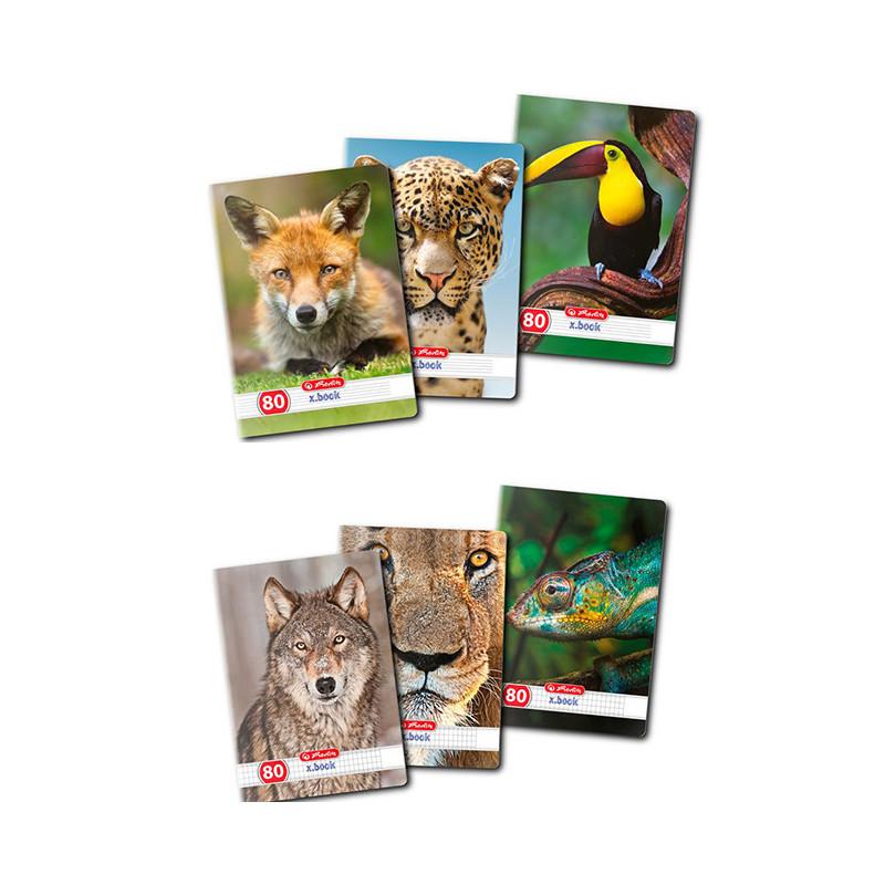 Set 10 Caiete A4, Herlitz Animals, 5 Dictando + 5 Matematica
