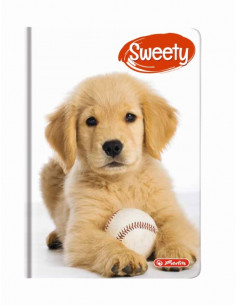 Agenda A6 Nedatata Sweety 352 File, Motiv Golden Retriever Herlitz