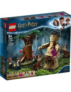 Lego Harry Potter: Pădurea Interzisă: Întâlnirea Dintre Grawp
