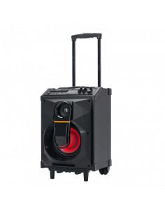 Boxa trolley Serioux putere totala 40W RMS conectivitate: