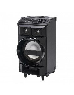 Boxa trolley Serioux putere totala 130W RMS conectivitate: