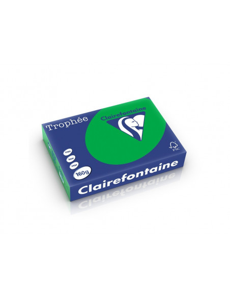 Carton color Clairefontaine Intens, Verde Bill