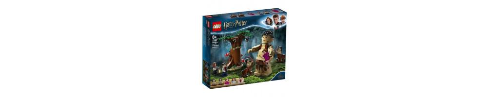 Cauti Lego Harry Potter la preturi mici?  Alege din oferta ROUA.ro